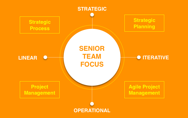 Strategic Resource Senior Team Focus